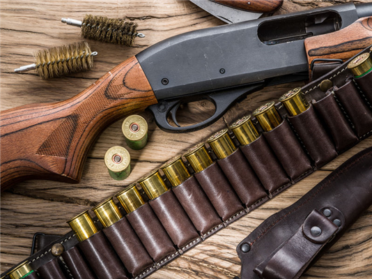 The Shotgun – a Multi-Purpose and Versatile Platform